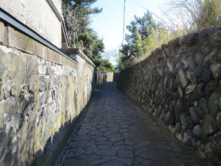 image/_t_s_u_tsubakiseitai_blog_import_5b8fba9e22da6.jpg
