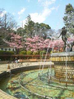 image/_t_s_u_tsubakiseitai_blog_import_5b8fbb53bf2e9.jpg