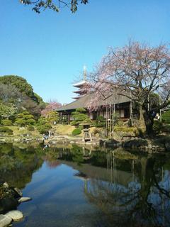 image/_t_s_u_tsubakiseitai_blog_import_5b8fbb57b35f9.jpg