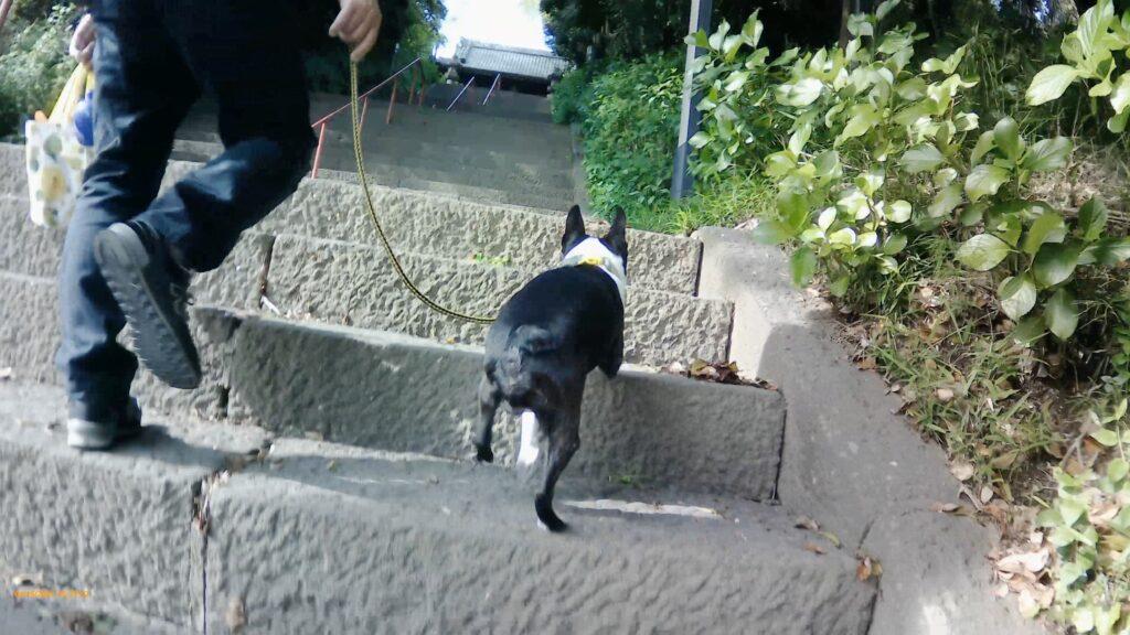 真間山弘法寺の階段